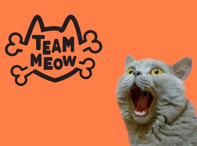 Team meow