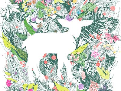Lamb Flora