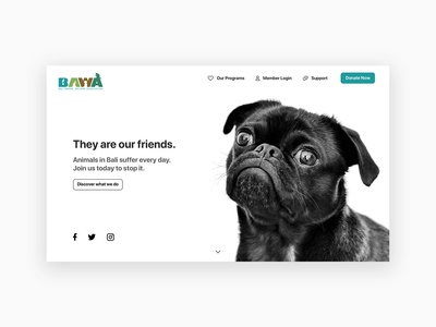 Landing Page Concept: BAWA