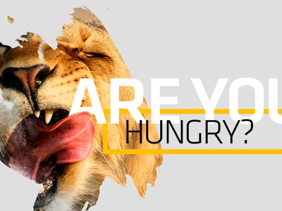 Are you hungry? typeface national geographic animal lion