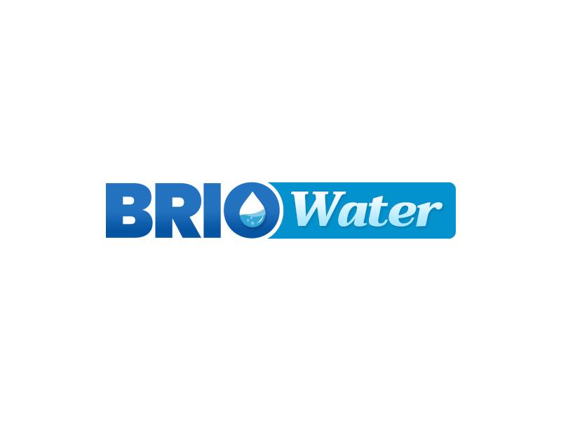 Brio Water Logo minimal typography illustration logo branding