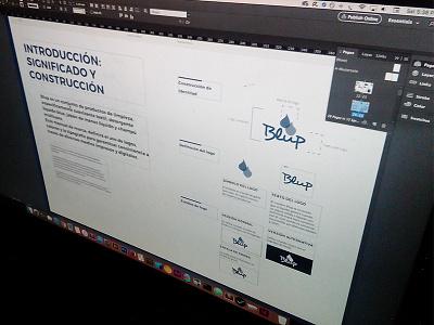 Coming soon.... pdf book magazine print indesign guidelines branding logo identity