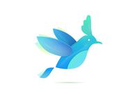 a bird!biu~ biu~