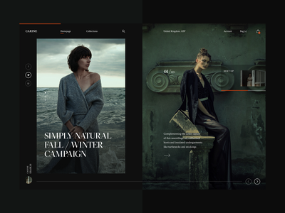 Carine fashion store - Simply Natural Fall/Winter Campaign webdesign web layout fashion clean typography modern ux ui