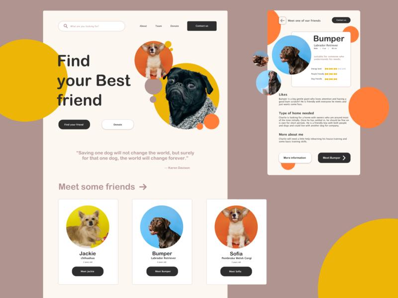 Dog adoption Website design