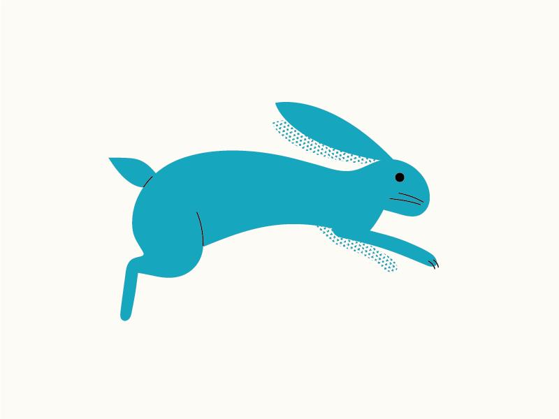 Bunny hop illustration rabbit