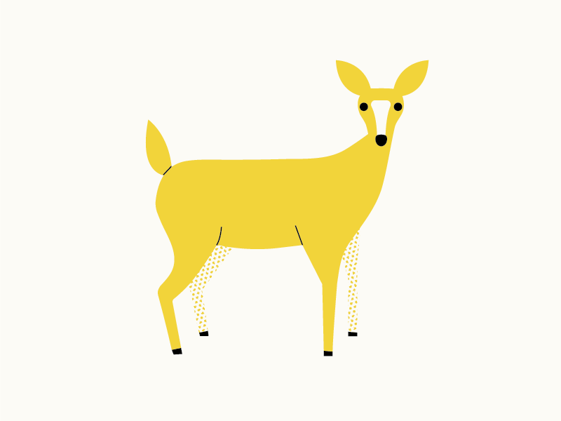 Doe, a Deer wildlife illustration deer