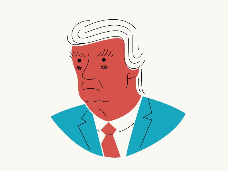 The Donald illustration president trump donald