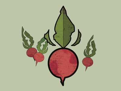 Provisions Beet Preview organic illustration garden plant seed provisions beet vegetable