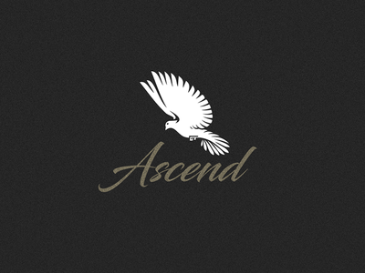 Ascend logo proposal