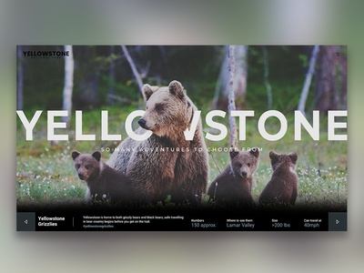Yellowstone National Park Landing Page