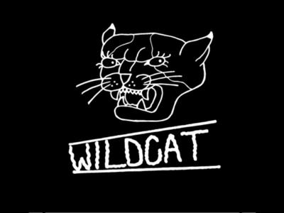 Wild (house) Cat