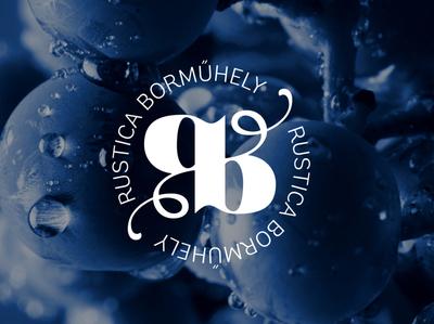 Logo design for a vinery logo branding letterlogo typography typologo logodesign