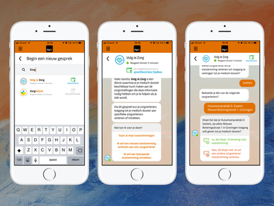 Chat with the government - Control who can use your data e-health permissions chatbot government app digid