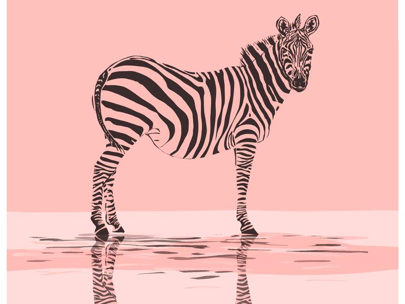 Zebra icon design illustration