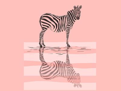 fullsize zebra ad reflection in Pink