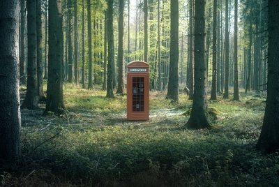 Forest Phone Booth - Surrealism