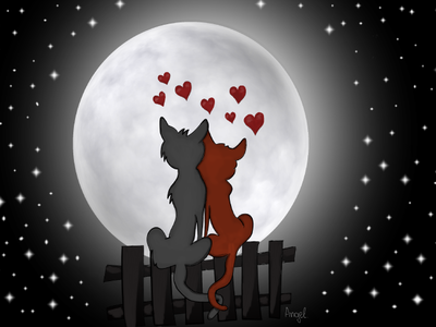 Love Under Moonlight romantic moon moonlight love cats cartoon illustration illustration digital art