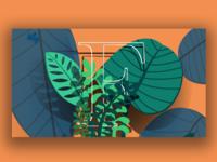Rainforrest Animation 2.