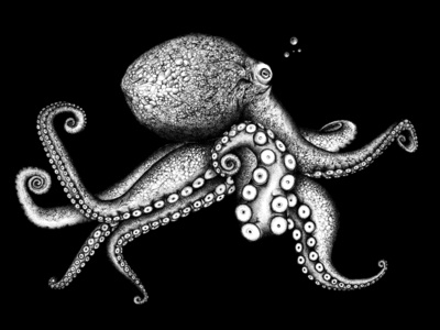 Octopus garden © by the ink - Cécile Ollichon