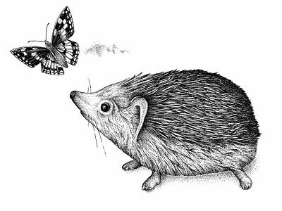 Hedgehog  © by the ink - Cécile Ollichon ink drawing ink pen ink art artistic drawing black  white blackandwhite dotwork illustration inkdrawing nature hedgehog