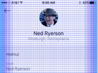 Ios grid profile example