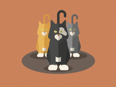 Here kitty kitty kitty infographic storage space hoarding cats