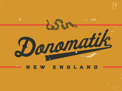 Donomatik script logo 'Daisy' donomatik new england boston vector script typography type design logotype logo