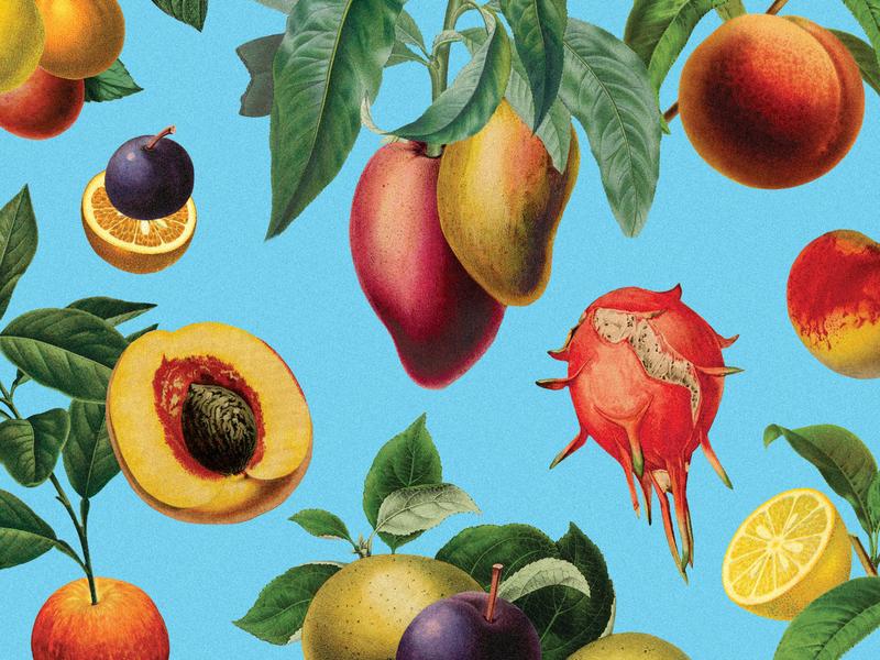 Botanical Pattern thats all patttern botanical