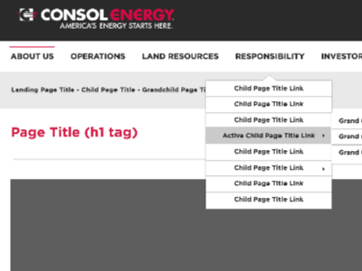 CONSOL Style Guide styleti.le design system style guide