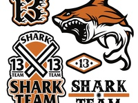 Shark Team