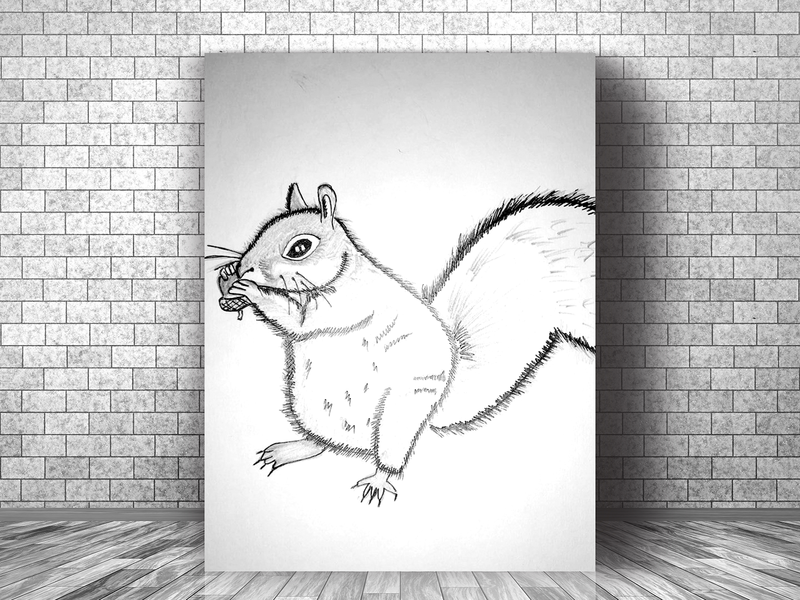 Sketch Squirrel character illustration design creative artwork art 2d