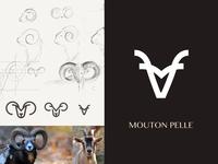 Mouton Pelle  Branding & Logo design
