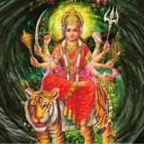 Tantrik Astrologer