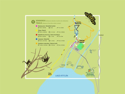 Trails map of Atitlan Nature Reserve illustration beach trails nature map vector