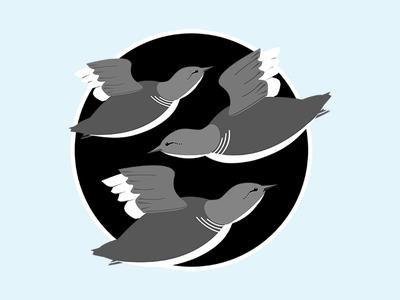 Birdflight patch