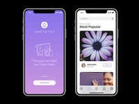 Amethyst: Free iPhone X App Ui For Sketch