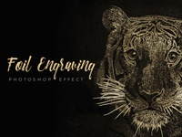 Foil Engraving Art Effect for Photoshop [Free Download]