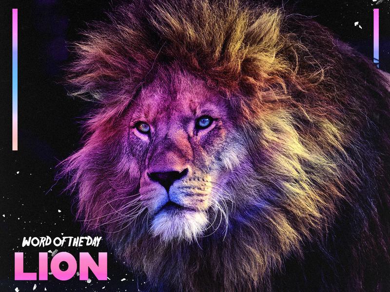 LION dark word of the day photoshop photomanipulation gradient lion