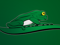 Frog - Grenouille