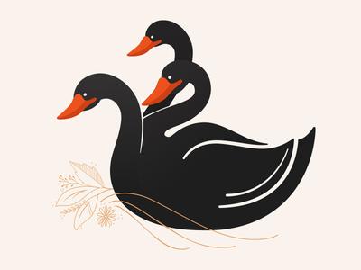 Hydra Swan
