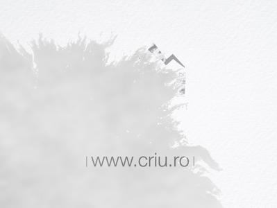 site and logo criu ink transition site logo animation branding logo