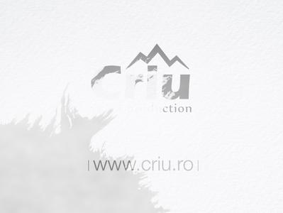 story animated criu videoproduction simple simplicity logo criu design story