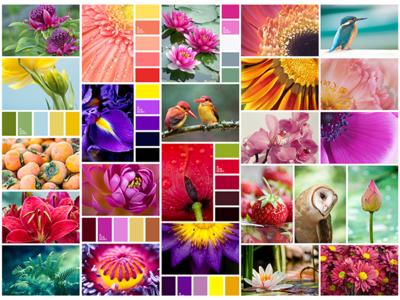 Natural Color Palette  colors design material ui palette color natural