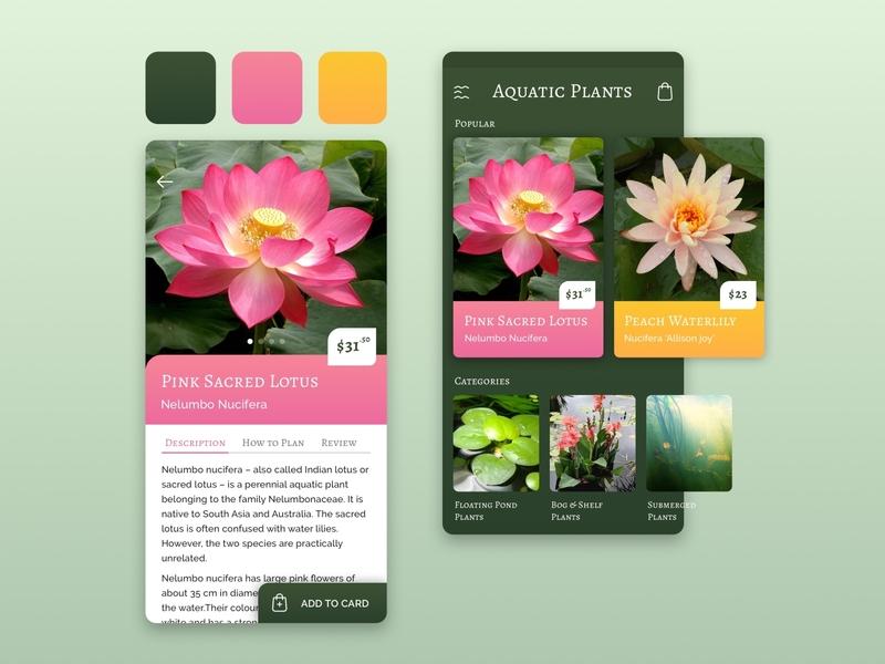 Aquatic Plants store store plants aquatic shop online natural palette colors design ui app concept ecommerce mobile app design mobile