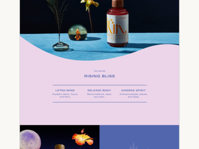 Website for Kin Euphorics social tonic euphoric kin shopify ecommerce e-commerce typography interaction design mobile web ux luxury fashion lifestyle product design ui