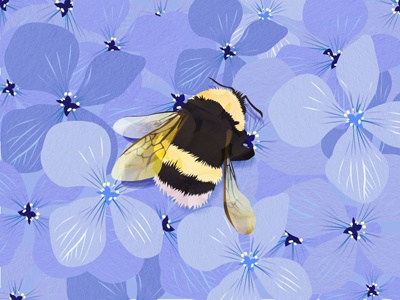Busy Solitutude insect vector illustration flowers bee bumble