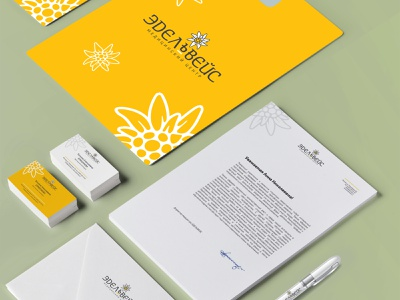 medical center logo branding design
