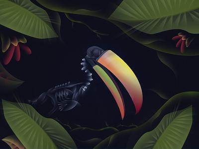 Toucan dark forrest leaves nature toucan graphic design vector design illustration art illustration