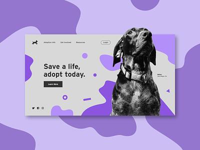 Pet Adoption Concept dsgn web design website web ux ui purple pets dog concept minimal